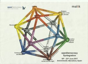 Team Syntegrity Diagram